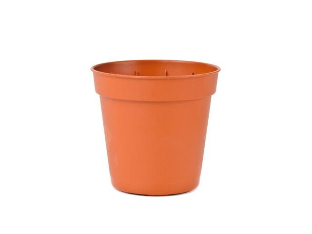 プラスチックの植木鉢は玄関に置いてはいけない