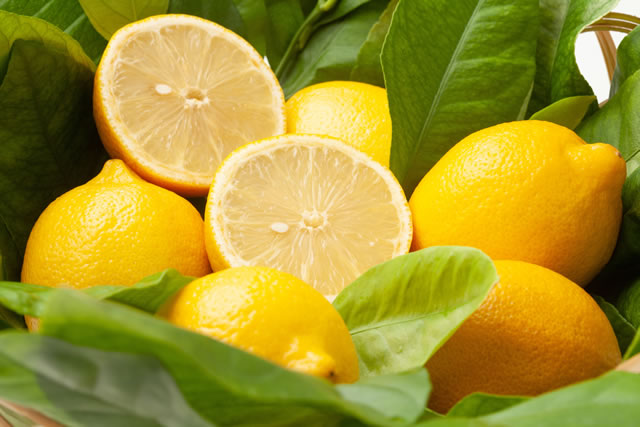 葉っぱに囲まれたレモン