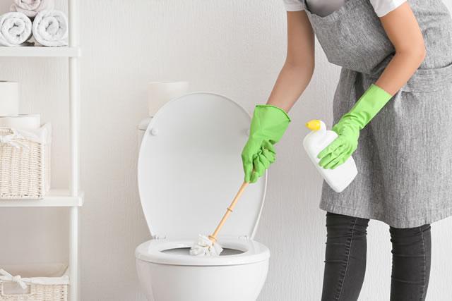 トイレを掃除する主婦