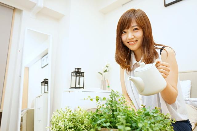 観葉植物に水をあげる女性