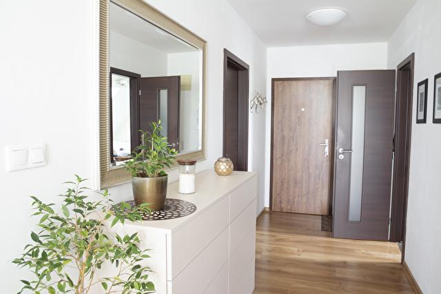 観葉植物が置いてある玄関