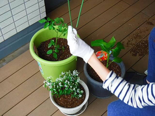 植木鉢とバルコニー