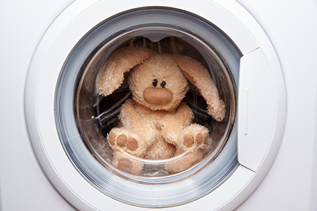 洗濯機に入ったぬいぐるみ