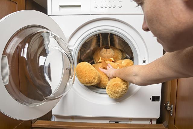 クマのぬいぐるみを乾燥機に入れる