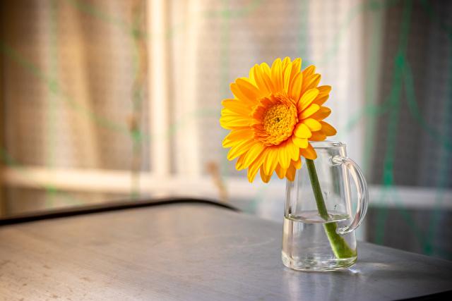 オレンジ色の花を飾っている様子