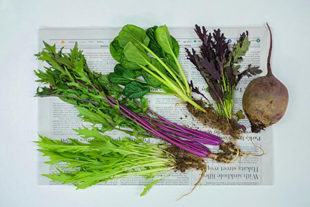 新聞紙と野菜