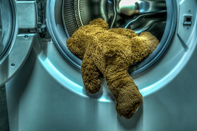 乾燥機に入ったクマのぬいぐるみ