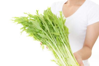 水菜を手に持っている女性