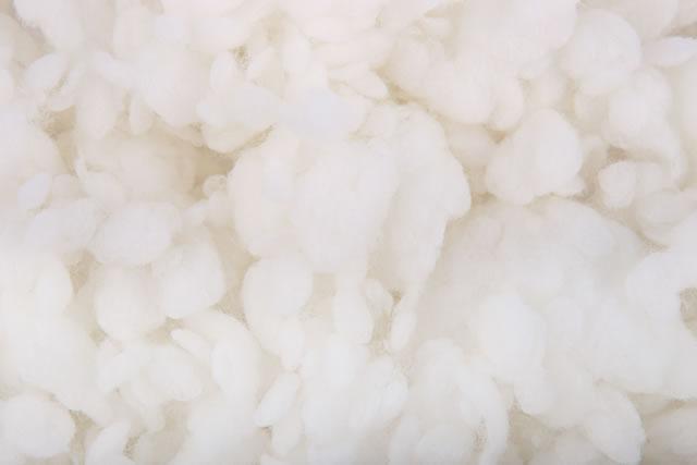 綿のアップ