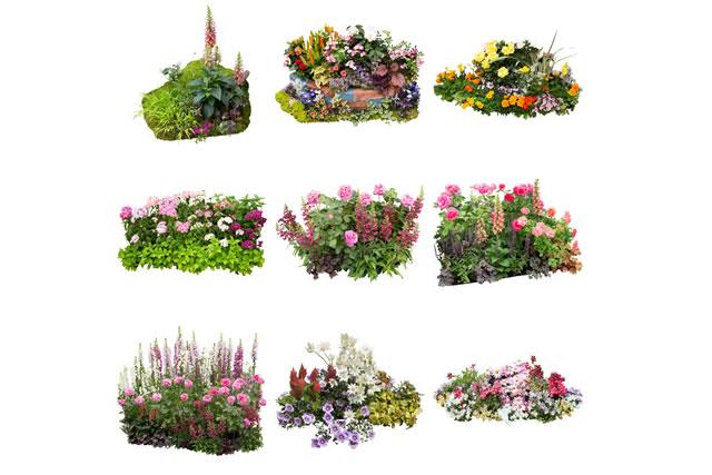 様々な種類の寄せ植え