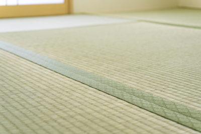 きれいな畳のある和室