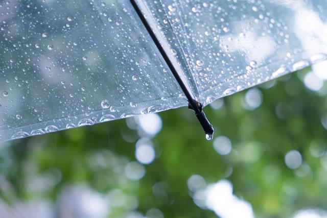 雨に打たれた傘