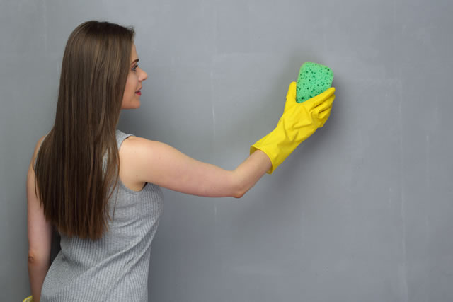 Woman washing wall with sponge