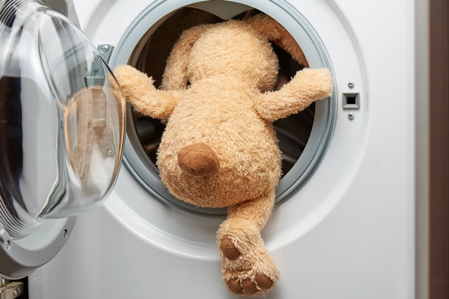 Stuffed toy rabbit with his back in the washing machine.