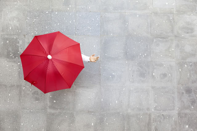 上から見た傘