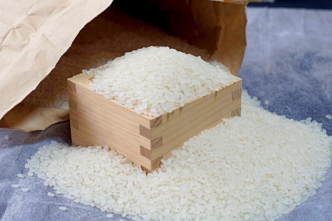 木枡からあふれた古代米