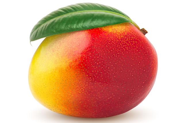 葉つきマンゴー