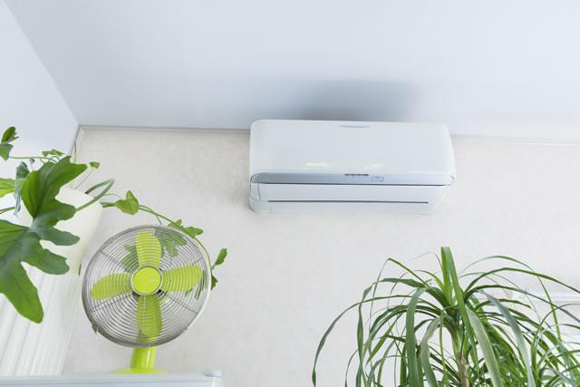 エアコンと扇風機と観葉植物