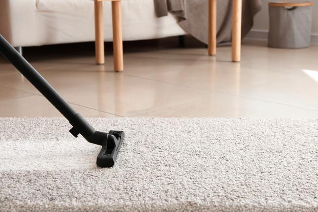 リビングに敷かれたカーペットを掃除しているところ