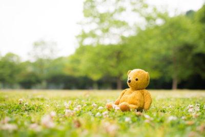 芝生に座るテディーベアー