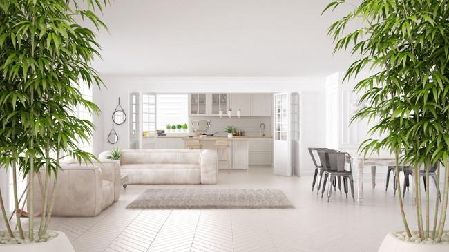 ホワイトカラーのインテリアで統一された部屋と観葉植物
