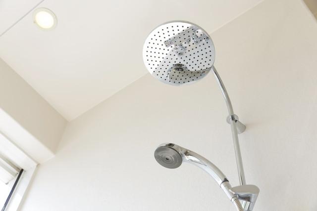 バスルーム、シャワーヘッドが2つ