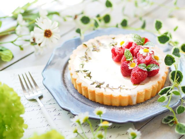 ラズベリーがのったレアチーズケーキ