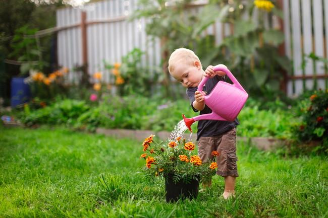 庭にある花の鉢にじょうろで水やりをしている男の子