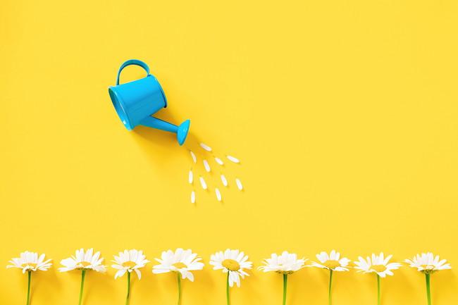 じょうろで花に水やりをするイメージ