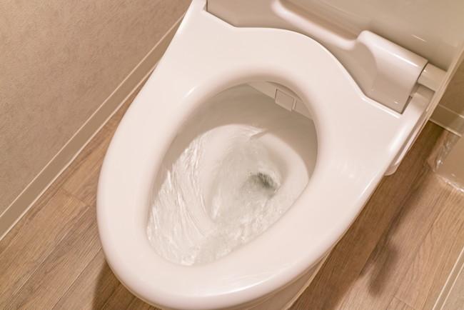 水洗トイレの水を流しているところ