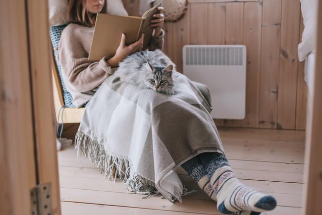 電気毛布を膝にかけ椅子の上で猫とくつろぎながら本を読んでいる女性