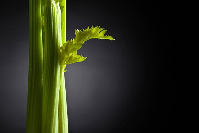 セロリの茎