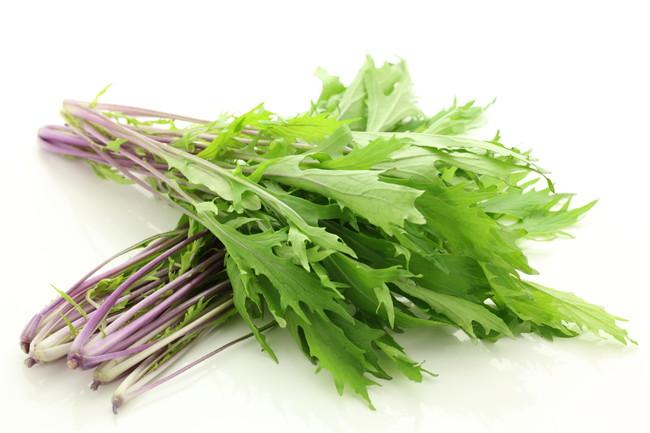 茎が紫色の水菜