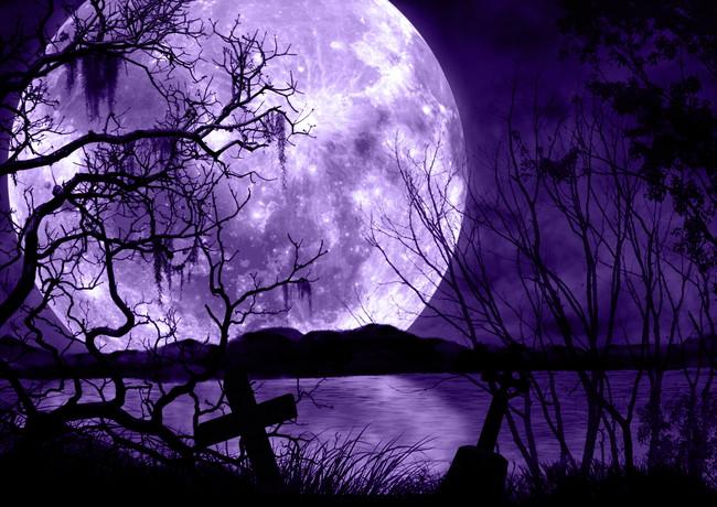 暗い森の夜と紫の満月の風景