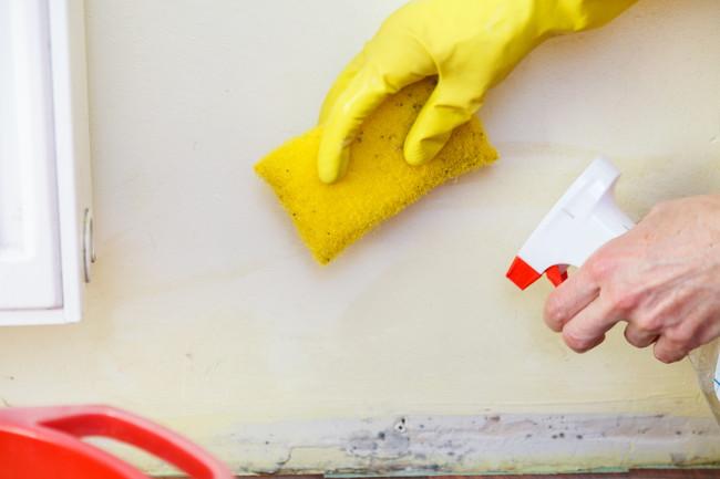 洗剤とスポンジでカビ掃除をしているところ