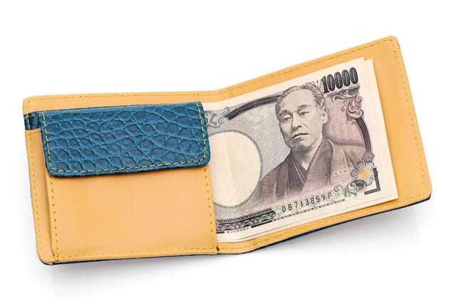 新しい財布と紙幣