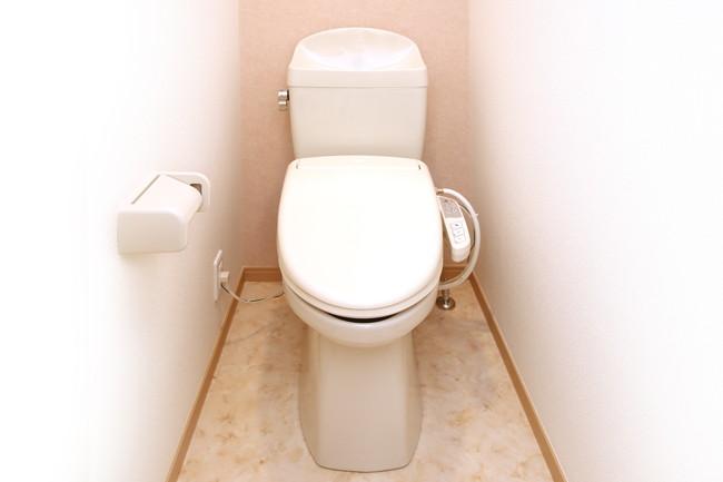 掃除されたトイレ