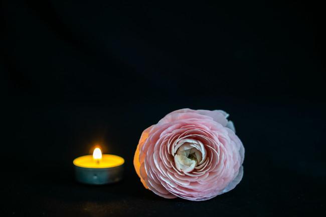 キャンドルと菊の花