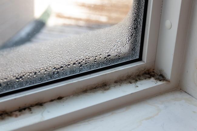 窓の結露と窓枠のカビ