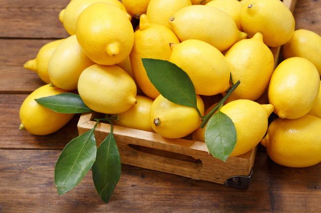 収穫後の大量のレモン