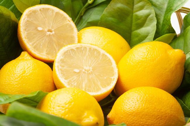 レモンとレモンの葉