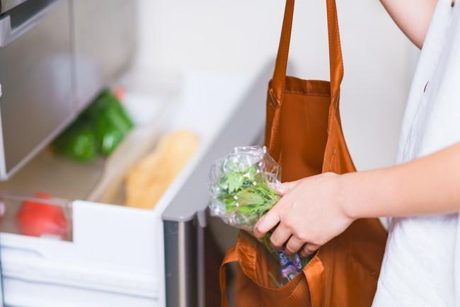 野菜を冷蔵庫に仕舞う様子