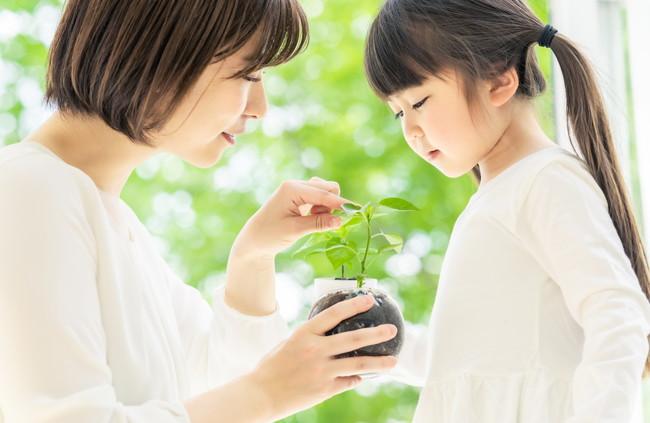 一緒に植物を観察している親子
