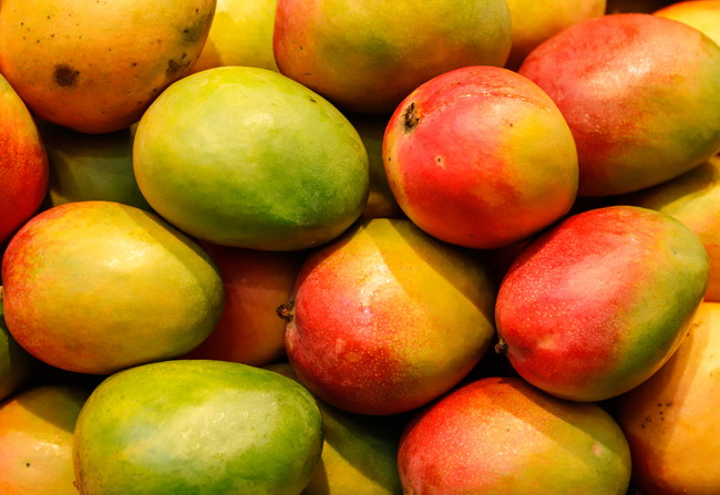たくさんのマンゴー