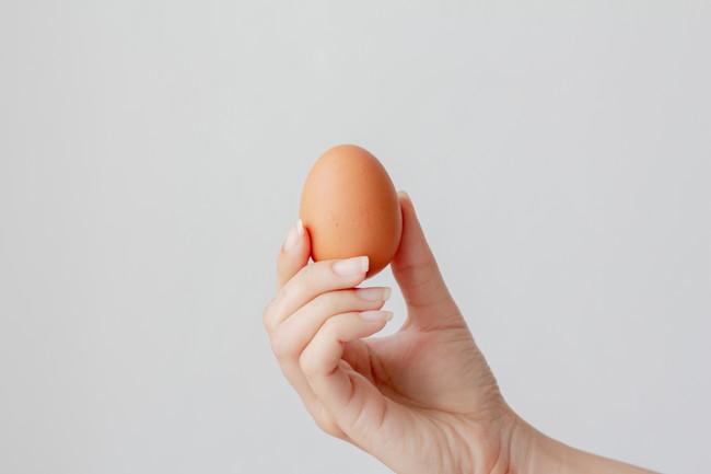 卵を持つ手