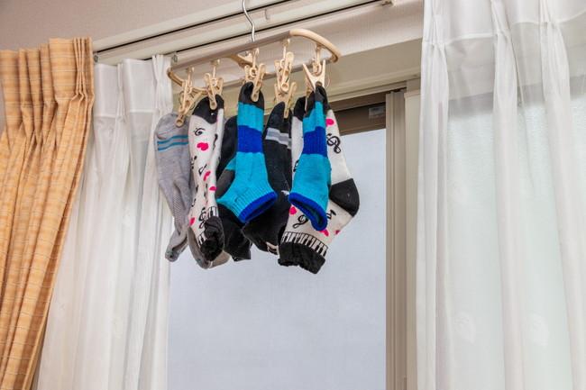 洗濯ハンガーに吊り下がった靴下