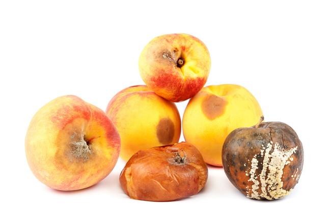 腐り始めた桃とリンゴ
