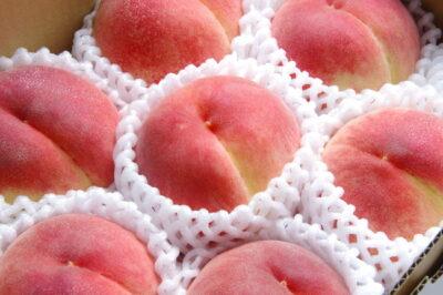 食べてはいけない桃とは