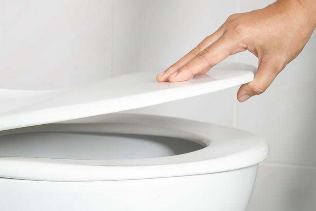 トイレの蓋を開ける様子
