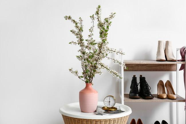 植物を飾っている玄関